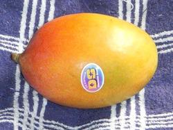 Mango_aus