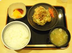 Yoshinoya330