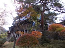 Furukawa6