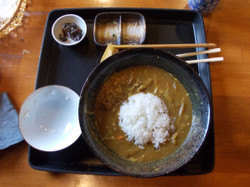 Curry_zousui2