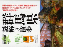 Gunma_nazo