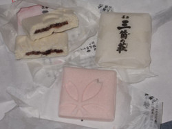 Hachinoki_1a