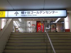 Hatagaya_g