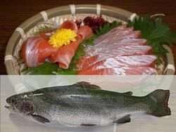 Ginhikari
