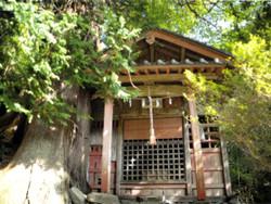 Gunma_fujioka6