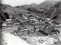 Fujiwara1954
