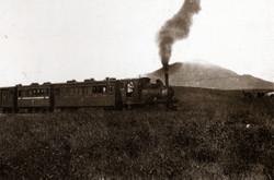 Kusakaru60