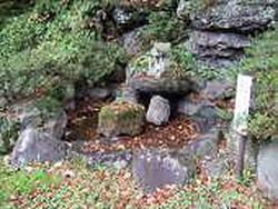 Ushinokuso