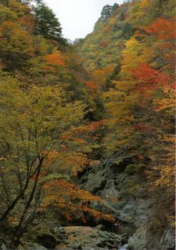 Kannagawa38