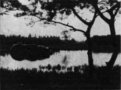 Otsuyagafychi