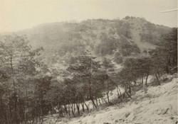 Kanayama26