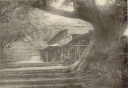 Kanayama28
