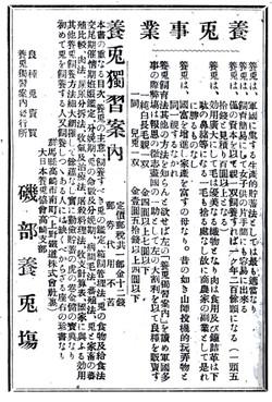 Gunma_usagi10