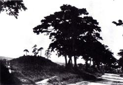 Kuragana35