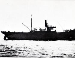 Shirakami91