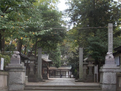 Tsukinomiya21