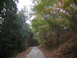 Okumusashi1031c