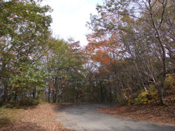 Okumusashi1031e
