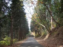 Okumusashi1031f