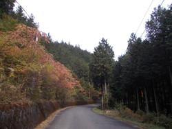 Okumusashi1031g