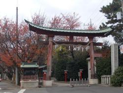 Washinomiya21