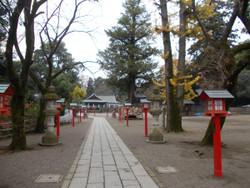 Washinomiya23