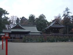 Washinomiya25