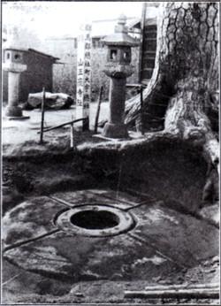 Kokubunji31