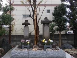 Shibukawa_haka11