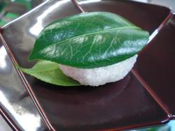 Tsubakimochi