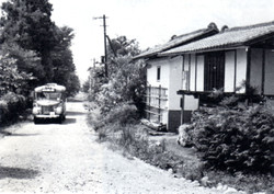 Kawabaikushina