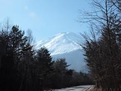 Fuji2015a