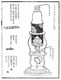 Edo_maicroscope