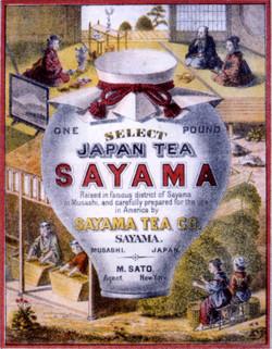 Sayamatea