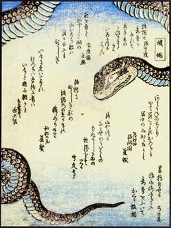 Uwabami85