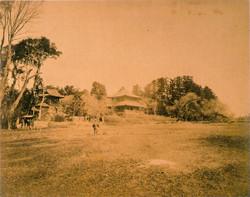 Uenodaibutsu63