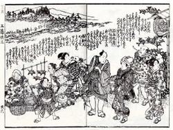 Hanashikame