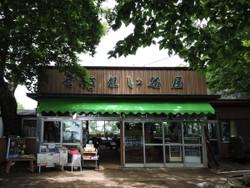 Tsukuba99