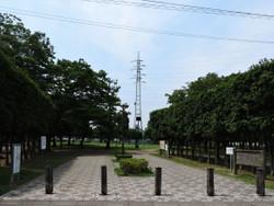 Mitsuwa03