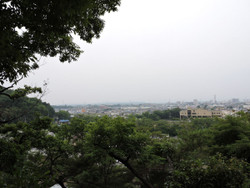 Yoshimi28