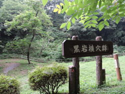 Yoshimi35