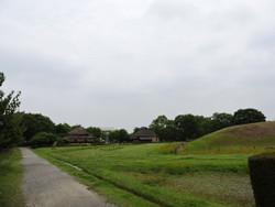 Gyoda24