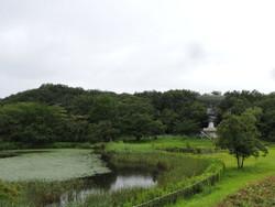 Hatoyama04