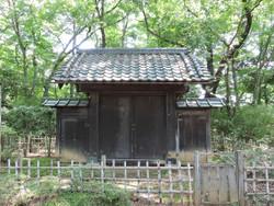 Iwatsuki65