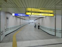 Shinobazu63