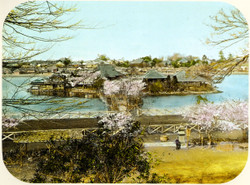 Shinobazu1890