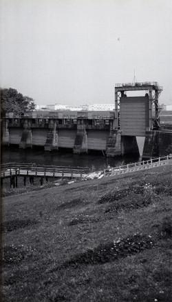 Iwabuchi1924