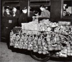 Aomori1953