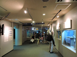 Shinagawa87