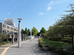 Shinagawa88